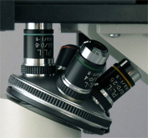 inverted microscope stage