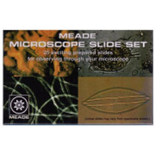 Prepared microscope slides from Meade