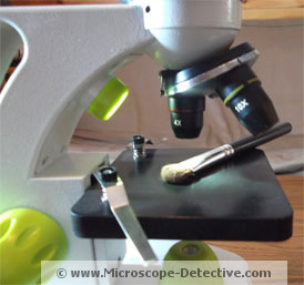 The TK2 Scope in magnifying mode www.microscope-detective.com/microscope-for-kids.html