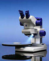 The Zeiss Stemi DV4 stereomicroscope